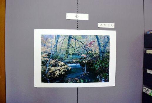 趣味の作品展示 佐藤富夫さん「写真」