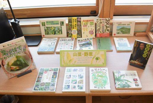-企画展示 山菜と野草-